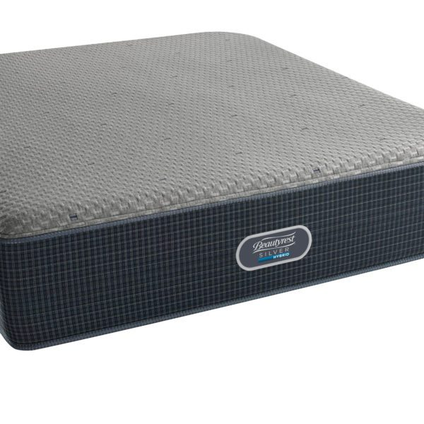 53022 Morningside Heights Ultimate Plush Mattress Only